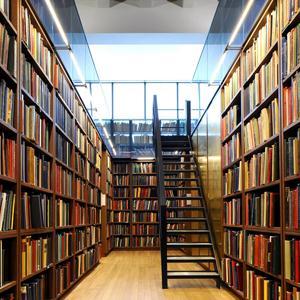 Библиотеки Деденево
