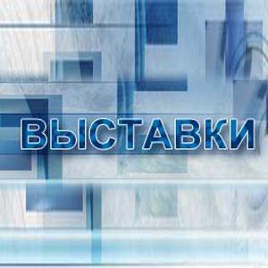 Выставки Деденево